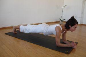 forearm plank(1)